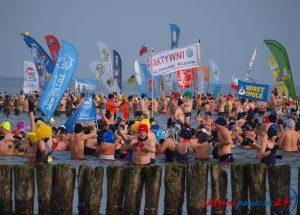 W Mielnie po raz kolejny odbędzie się największy w Polsce zlot morsów