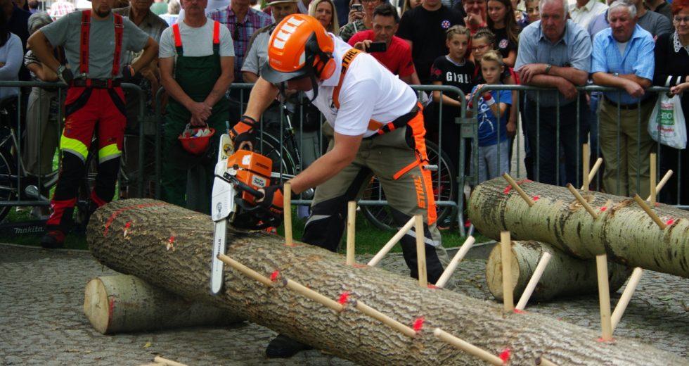 RDLP Toruń zwycięża Turniej Leśników w Szczecinku