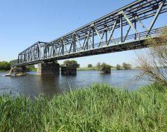Widok z polskiego brzegu Odry na niemieckie przęsła mostu odbudowane 1954-55[16148]